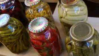 Pickle Making Business in hindi