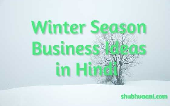 winter season business ideas in hindi